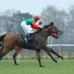 конный спорт в Польше